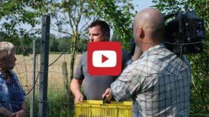 Aronia Video Kanal